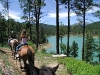 Horseback riding around Bonito Lake